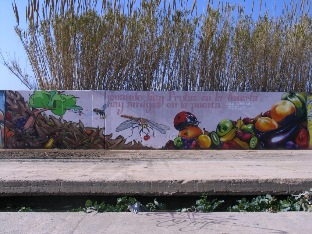 Fruit mural · CMYK team 2008